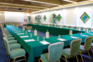 The Palazzo Room in Rome, one of the charming Royal Group meeting locations in Italy.